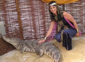 Location de crocodile - location d'animaux pour soirée oientale - IDS ANIMATIONS