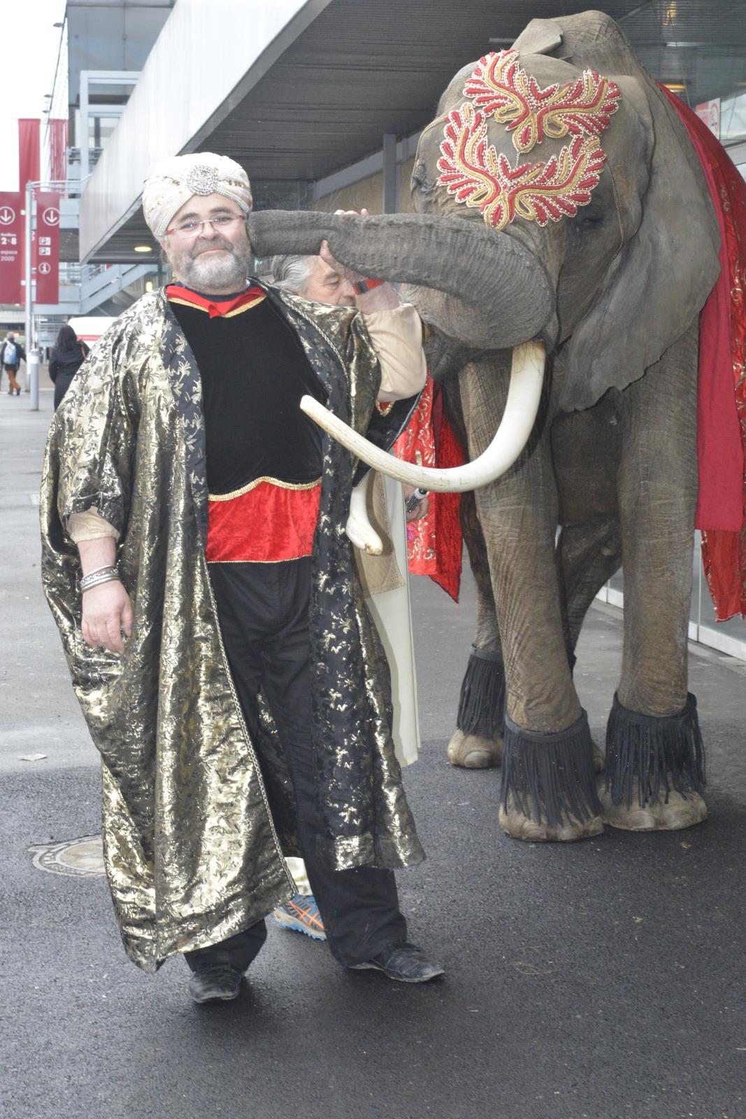 location d'éléphant IDS ANIMATIONS.JPG