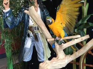 Location statue Jack Sparrow et perroquet avec décoration